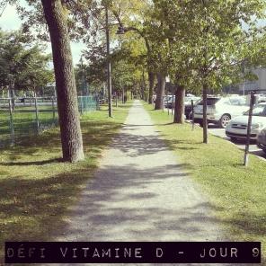defi-vitamine-d-jour-9