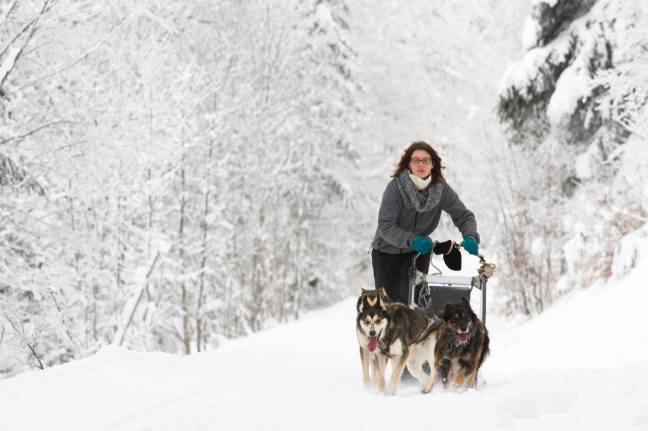 Elsa en traineau à chien. Crédit photo : Charlie Serrano